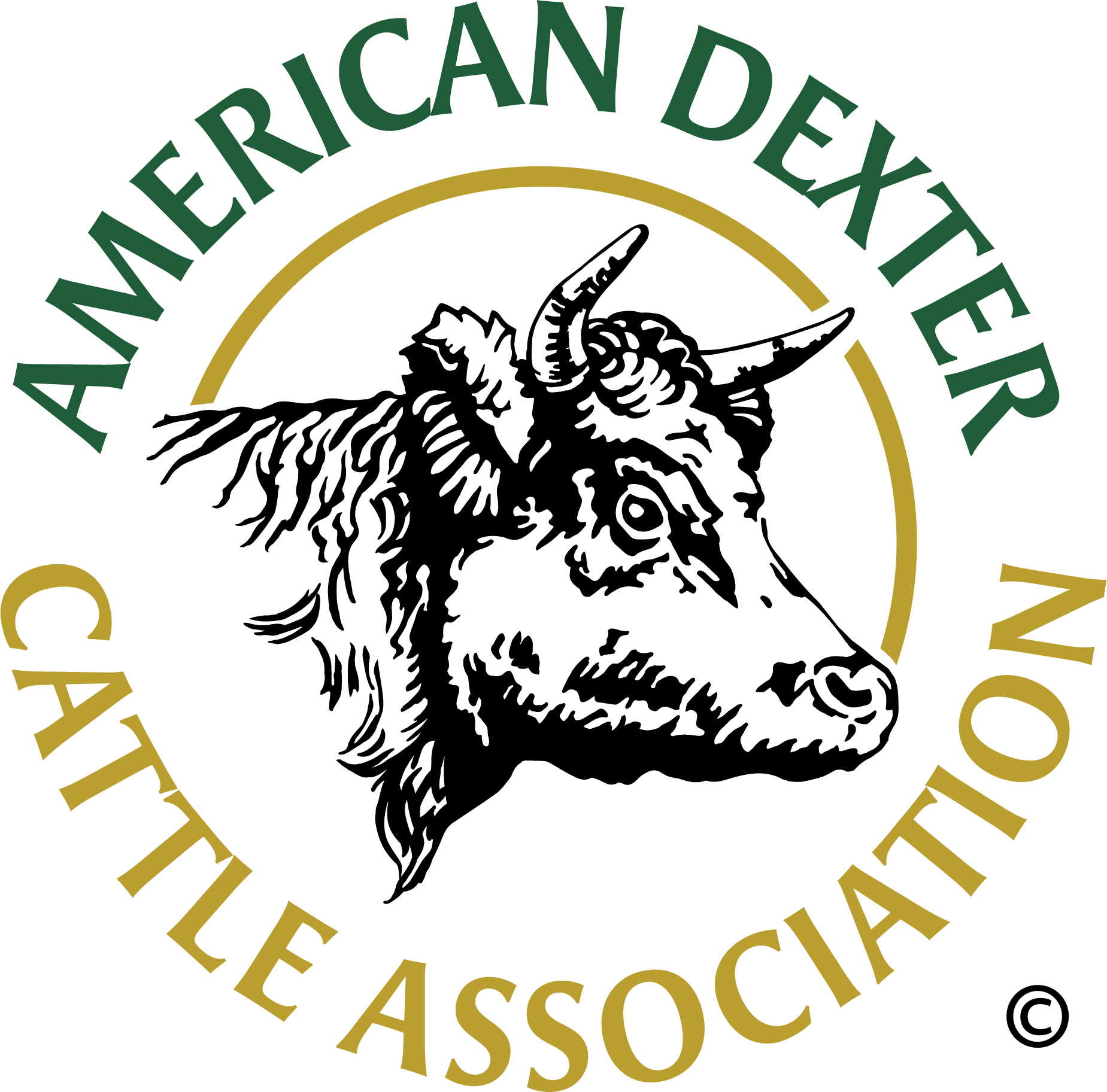 New Dexter Logo